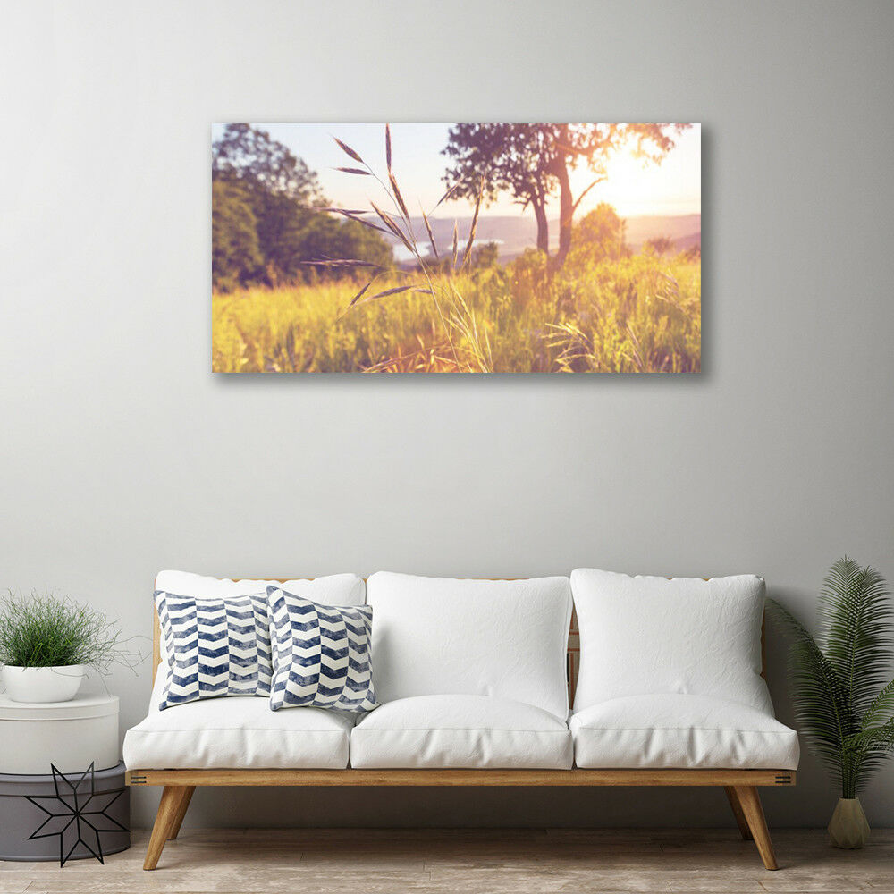 Canvas print Wall art on 100x50 Image Picture Picture Picture Meadow Grass Tree Nature 8d71c0