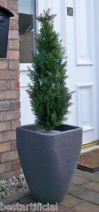 BEST artificiale 90 cm 3 piedi TOPIARIA Cedar ALBERO ALT BUXUS BOSSO erba PALLA BAY NUOVO