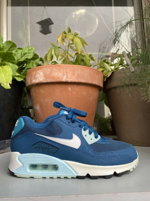 Size 6.5 - Nike Air Max 90 Essential Blue Force
