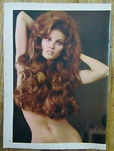 1970 RAQUEL WELCH Long Red Hair Posing Playboy Magazine Full Page Photo   eBay