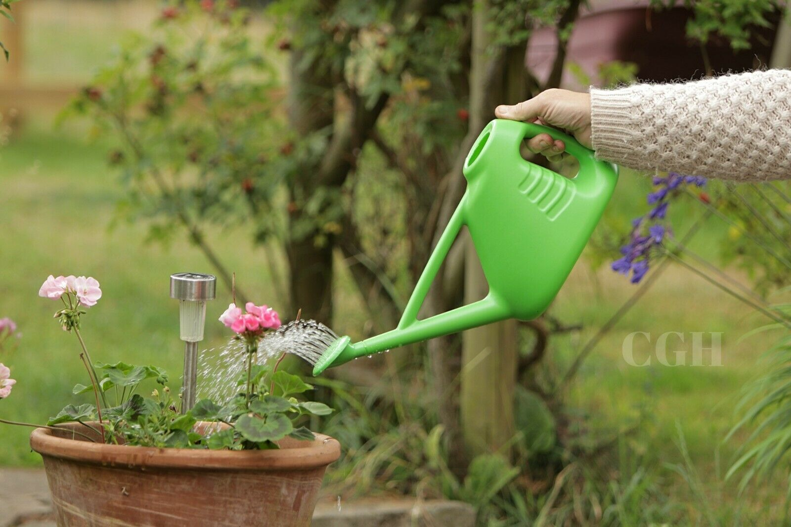 Plastic Plant Watering Can Indoor/Outdoor 2L Green - Rose Head - Easy Pour Spray