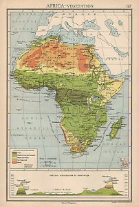 Map Of Africa Vegetation.Details About 1942 Map Africa Vegetation Sahara Sudan Mountain Heights Forest Grass Deserts