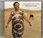 CD ALBUM 15 TITRES--CESARIA EVORA--SAO VICENTE DI LONGE--2001