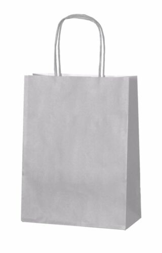 Silver Paper Party Bags With Handles Gift Carrier Loot 18 X 22 8cm
