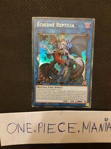 Yu-Gi-Oh-Echidne-Reptilia-DUOV-FR016-1st