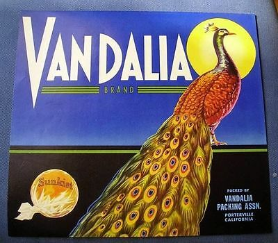 Porterville Vandalia Peacock Bird Orange Citrus Fruit Crate Label Art Print
