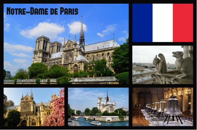 Notre Dame de París, France - Recuerdo Original Imán de Nevera -Nuevo-