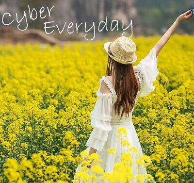 cybereveryday