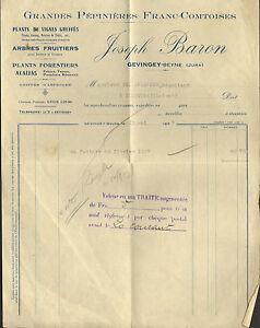 39 Gevingey-beyne Facture Pepinieres Joseph Baron 1937 Jg3gm3dk-07223224-884621684
