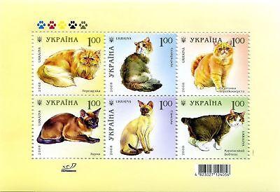 Katzenrassen 967-972/block 67**postfrisch Auf Dem Internationalen Markt Hohes Ansehen GenießEn Ukraine 2008