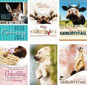 100 Glückwunschkarten Zum Geburtstag Tiere 51 5402 Geburtstagskarte