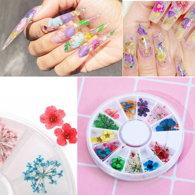 Real Dried Dry Flowers 3D Nail Art Decoration Design DIY Tips Manicure 12Colors-