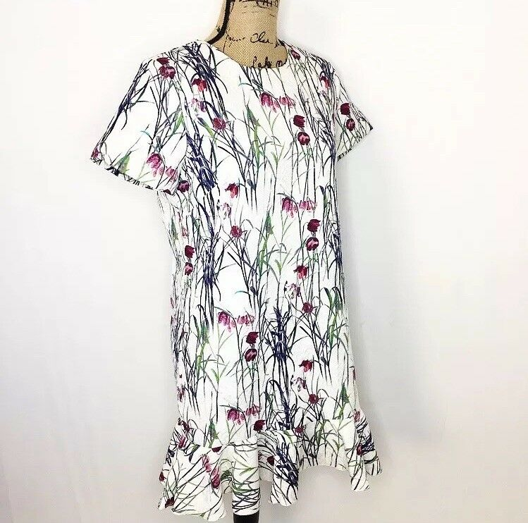 NWT Sam & Lavi Floral Ruffle Dress M White Textured Bijon Shift Dress Anthro