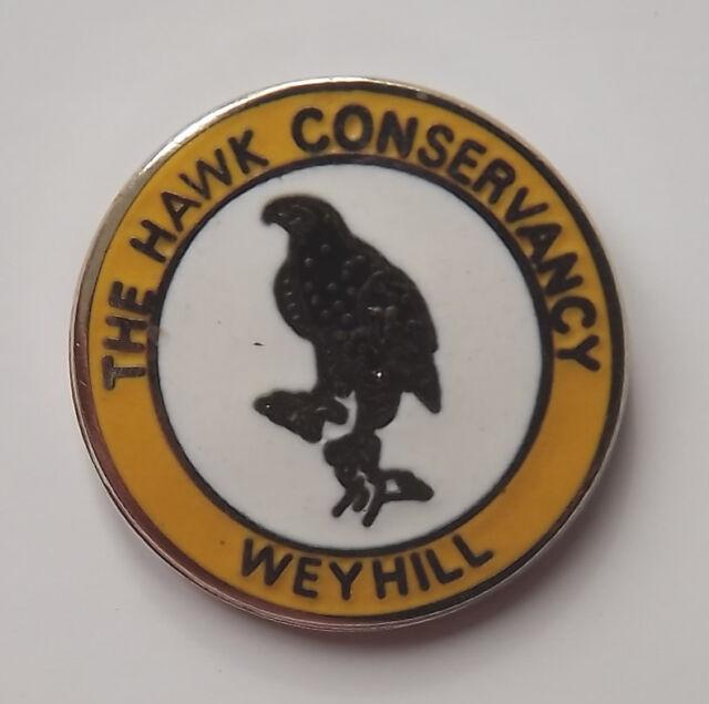 Hawk Head Pewter Pin Brooch Raptor Falconry Bird of Prey British Hand Crafted