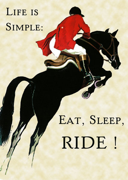 Horse Eat Sleep Ride Equestrian Jumping 20x30 Poster Repro FREE S/H in USA