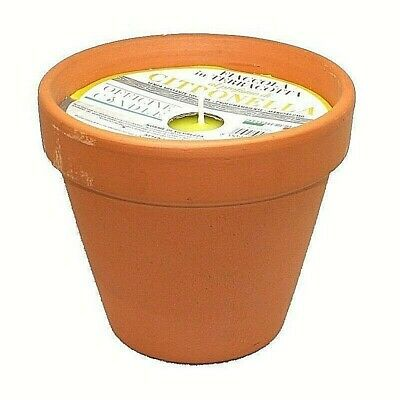 12 Vasetto Candela Profumata Citronella 10x8 Decorazione Giardino Piscina