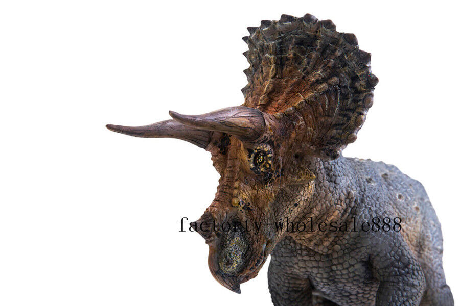 PNSO Action Action Action Figure Rare Triceratops Dinosaurs Model Scientific Precise Realistic ebce9c