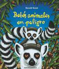 Bebes Animales en Peligro by Donald Grant (Hardback, 2010)