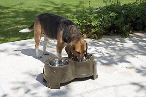 SAVIC-ELEVATED-DOG-FEEDER-DRINKER-IDEAL-FOR-MATURE-amp-ARTHRITIC-DOGS-MEDIUM
