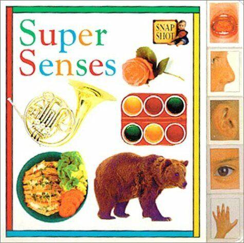 Tab Board Books  Super Senses