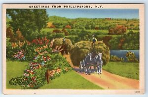 Vintage-Postcard-Greetings-From-Phillipsport-NY-Horse-Team-Pulling-Hay-Wagon