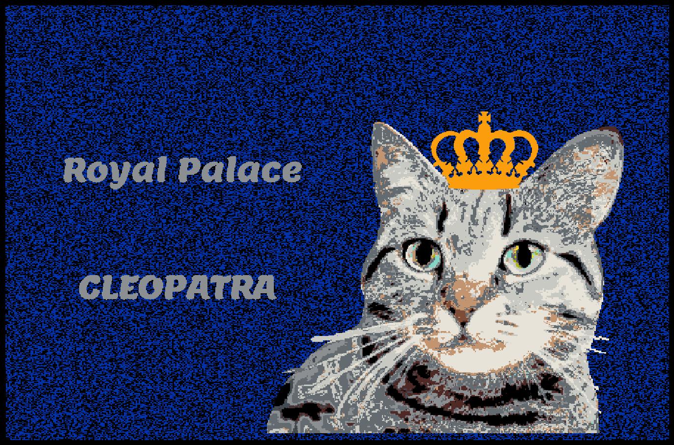 Fußmatte mit Namen Napfunterlage Katzenmatte  90x60 cm  Design 27180040 | Clever und praktisch