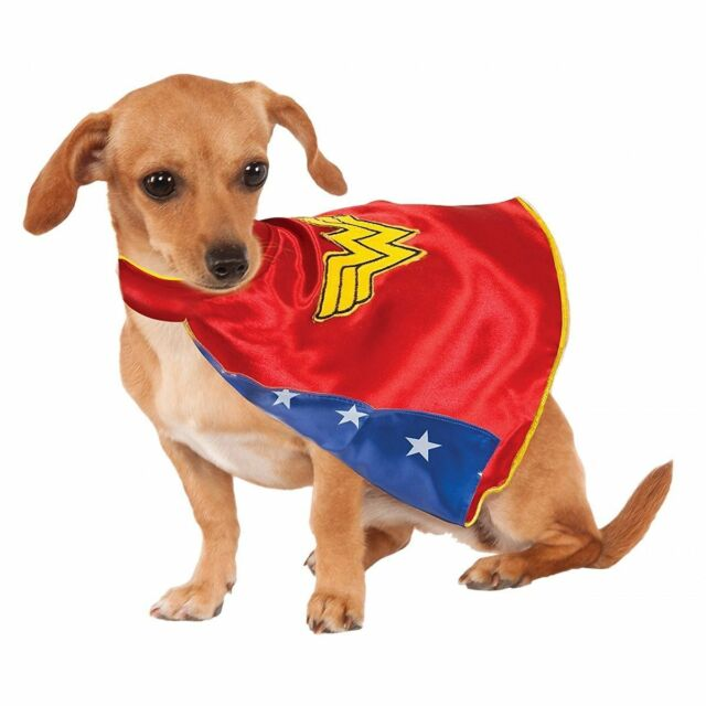 DC Comics Wonder Woman Hero Dog Costume Cape Animal Cat Pet XS SM MD LG XL  sc 1 st  eBay & New Halloween Pet Apparel - XL DC Comics Wonder Woman Hero Costume w ...