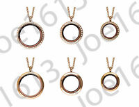 Stainless Steel Rose Gold Living Locket Memory Floating Charm Stone Magnetic