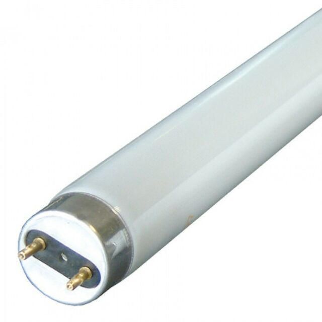 SYLVANIA BRANDED 4FT 36w ACTIVIA FLUORESCENT TUBE IN COLOUR 172 / DAYLIGHT