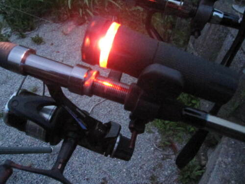 3 x Bissanzeiger Rotlicht Beleuchtung Karpfen Feeder Zander Karpfen Weißfisch