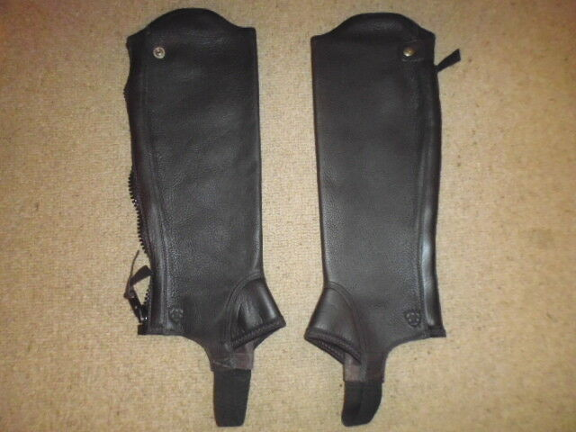 Ariat Chap Concord Chap Ariat riding gaitors half chaps chocolate Braun please read sizing fc95fe