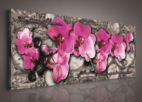 Bonne affaire prix la Fresque toile Fleurs Orchidée carte monde 14n453o3