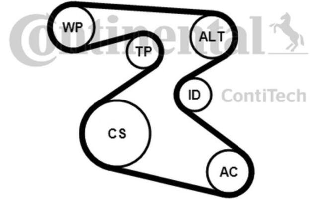 CONTITECH Juego de correas trapeciales poli V 6PK1873K1