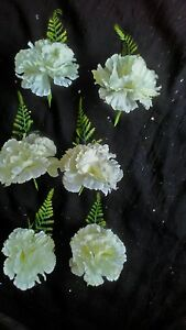 6-NEW-IVORY-SILK-CARNATION-FERN-BUTTONHOLES-WEDDING-PARTY-GUESTS-OCCASSIONS
