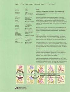 1110-29c-Herbs-4505-4509-Souvenir-Page
