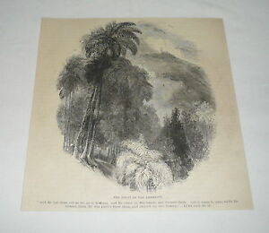 1879-magazine-engraving-THE-MOUNT-OF-THE-ASCENSION