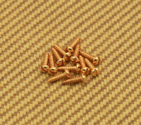 001-8370-g (12) 3/8 Guitar/bass Slotted Tuning Machine Mounting Screws - Gold