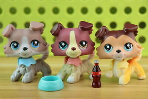 "2/"" Littlest Pet Shop LPS#893 Brown Collie Dog with 5pcs accessories"