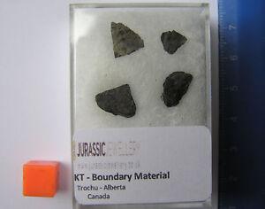 4 Petit Pièces de Super Rare Kt Limites Matériau - depuis la Day The Dinos Mort 3mk1oC6V-09120614-915934817
