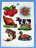 Vintage Standard Farm Outdoor Animal Scenes 6 Stickers 1 Sheet Fish,cow,duck,