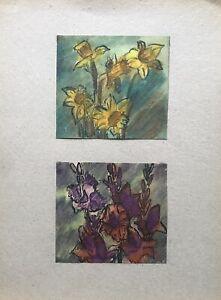 Georg-Schott-1906-narcisos-narcisos-flores-primavera-2