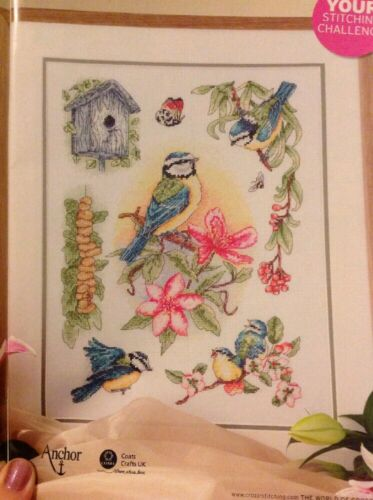 Blue Tit Sampler Bird Birdhouse Flower Blossom Cross Stitch Chart M