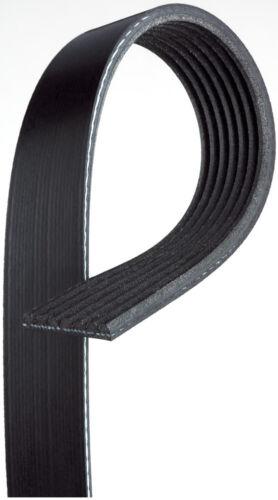 Serpentine Belt-Premium Oe Micro-v Belt Gates fits 16-19 Honda Civic 2.0L-L4