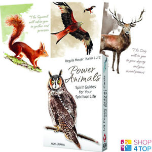 Power Animals How to Connect With Your Animal Spirit Guide