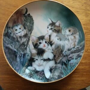 Franklin Mint Collectors Plate WHOO ARE YOU Cat Kitten Owl
