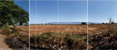 Terreno en venta, Amatitan, Jalisco, dentro denominación del Tequila
