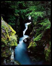 William Neill Avalanche Creek Poster Bild Kunstdruck & Alurahmen schwarz 71x56cm