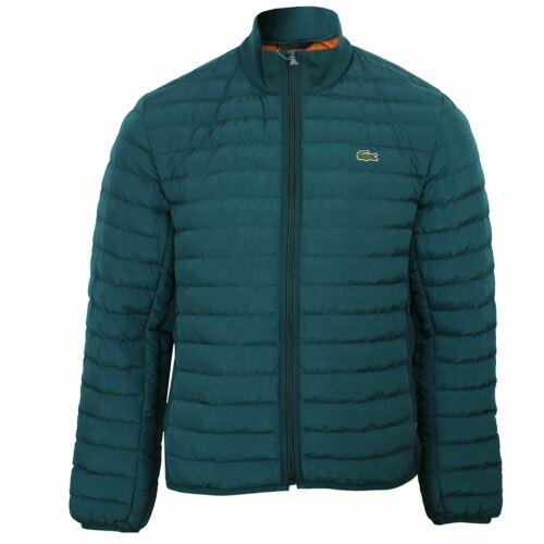 Lacoste manteau homme turquoise Matelassée Bulle Puffa Veste