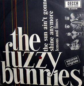 FUZZY-BUNNIES-RARE-DECCA-7-034-I-DISCO-ITALY-THE-SUN-AIN-039-T-GONNE-SHINE-ANYMO