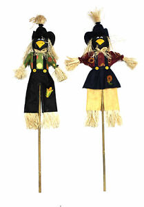 The Holiday Aisle 2 Piece Crow Garden Stake Set of 2